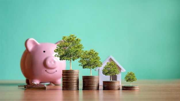 Tree growing on a pile of coins, credit concept. real estate ladder finance mortgage residential real estate