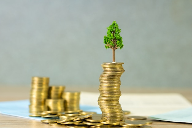 Tree growing on pile of golden coins and account book