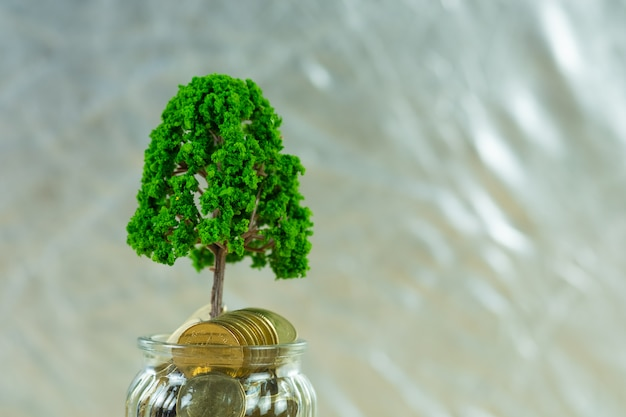 Tree growing on pile of golden coins in glass jar