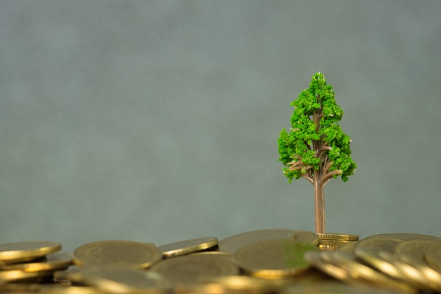 Tree growing on pile of golden coins