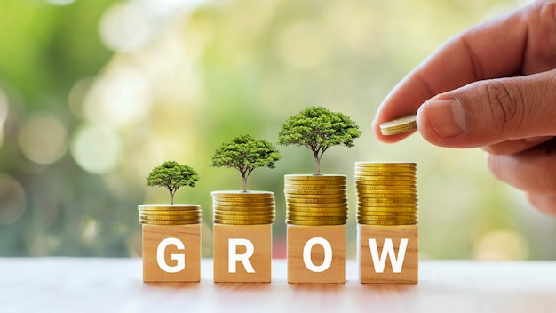 Tree growing on silver coin and square wooden block labeled grow money growth idea.