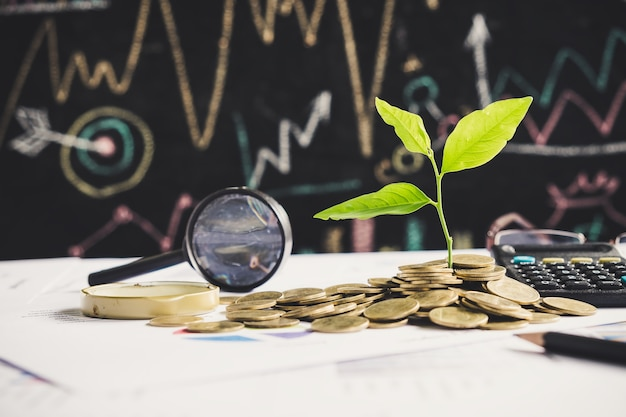 Tree growing on stack of coins on financial chart report with magnifying glass and calculator in background, idea for business growth concept