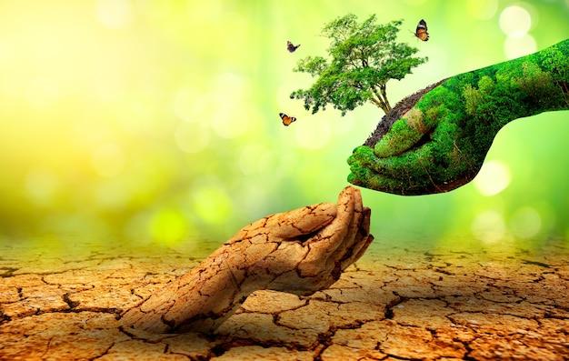 Дерево в двух руках с очень разными средами. день земли или всемирный день окружающей среды. глобальное потепление и загрязнение.