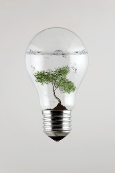 Дерево внутри лампочки