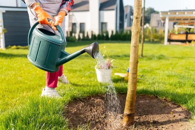 木。花に水をまくのに一日を費やしているインスピレーションを得たやる気のある人