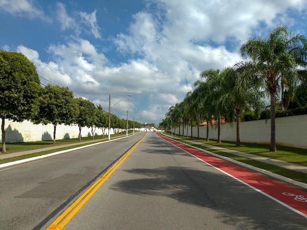 自転車道、青い空と雲のある並木道