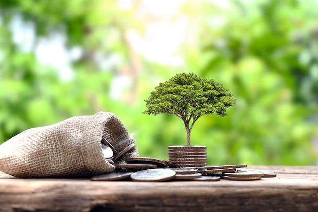 동전 더미에 있는 나무와 돈 가방 금융 개념 및 성장 비즈니스 금융