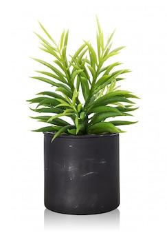 Tree pot isolated on white background.