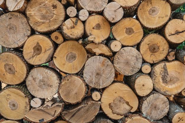 Годичные кольца старые текстуры выветривания древесины с поперечным сечением срезанного журнала.