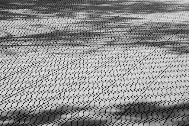 Tree shadow on tiles floor - monochrome