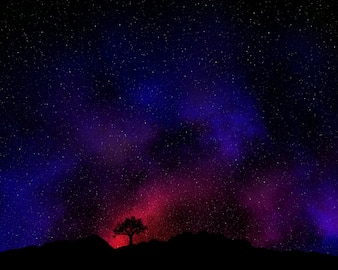 Tree silhouetted against a night sky with nebula