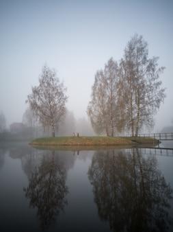 重い霧に覆われた湖の島の早朝の木のシルエット