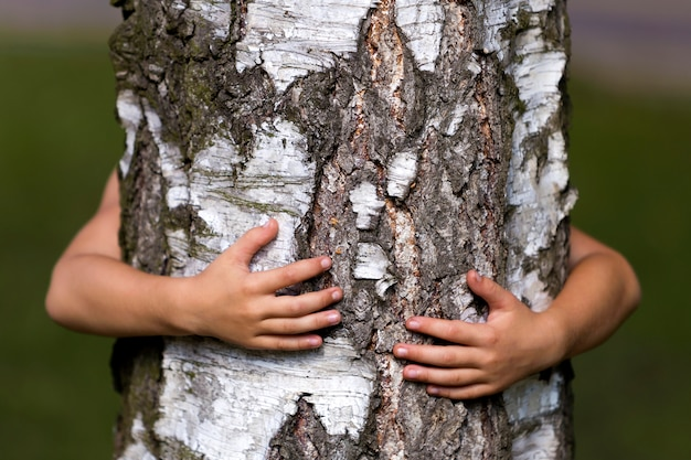 Tree trunk embraced by small child hands.