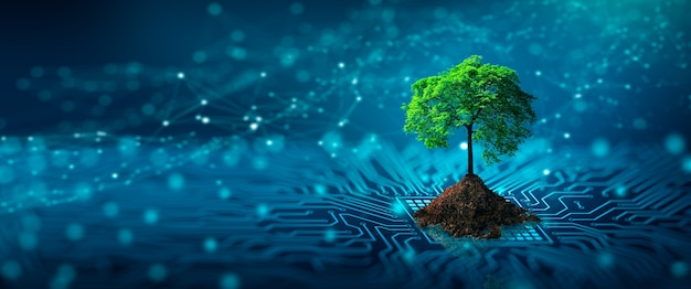 コンピュータ回路基板の収束点に土が生えている木