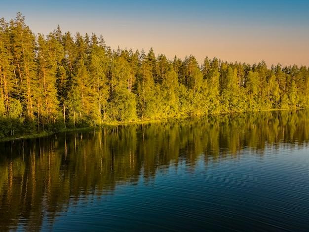 木々が森の湖に映る素晴らしい夕日デスクトップの壁紙