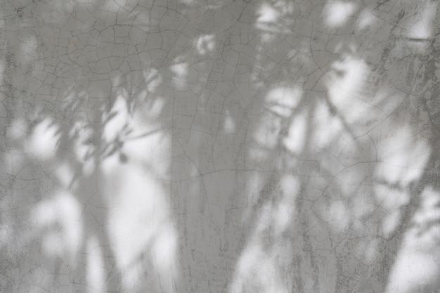 自然なセメントの壁のグランジコンクリートセメント石膏ペイントデザインテクスチャ背景に木枝葉影