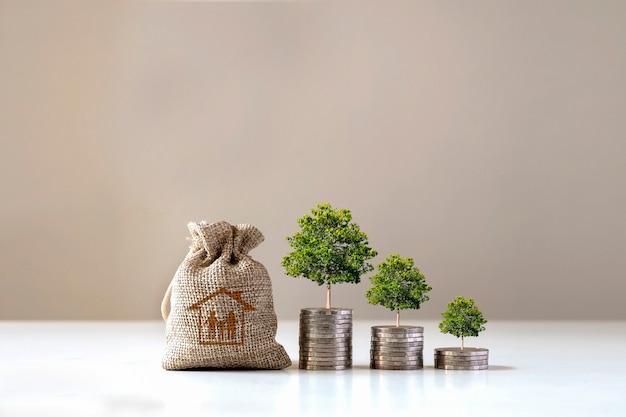 나무는 집, 재정적 아이디어 및 경제 상황을 사기 위해 돈을 저축하기 위해 돈과 가방 더미에서 자랍니다.