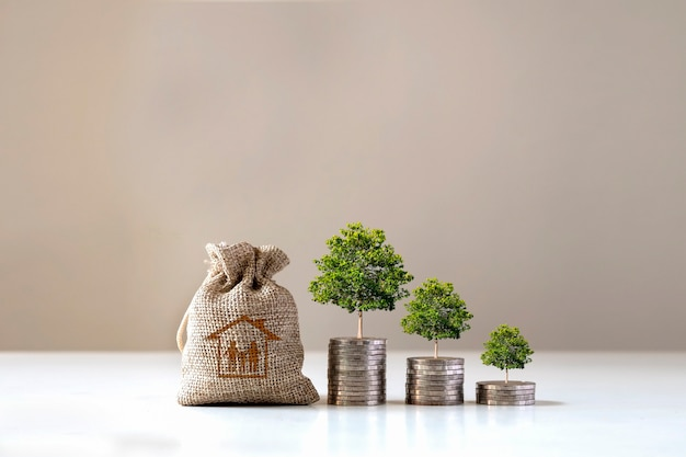 Trees grow on piles of money and bags for saving money to buy a house, financial ideas and economic conditions.