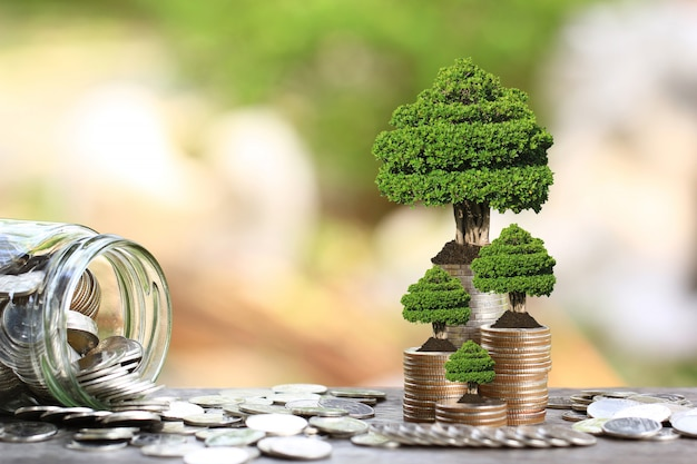 Trees growing on coins money and glass bottle