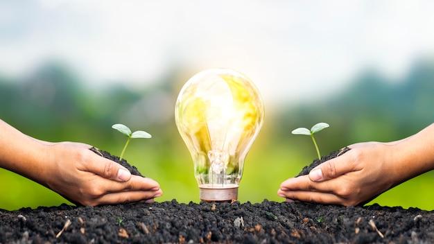 Деревья, растущие в руках людей, и энергосберегающие лампочки, освещающие землю