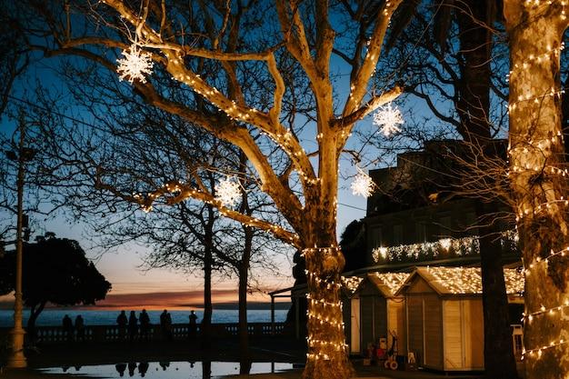 크리스마스 거리 장식 화환의 나무와 빛나는 눈송이의 배경