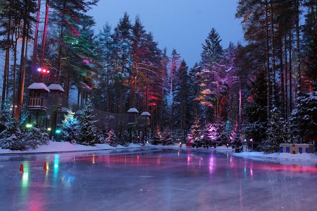 アイスリンクに反射する明るい光の森の木々。