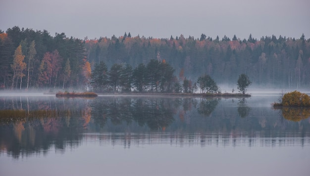 Trees on the island in the forest are reflected in the morning misty lake in early autumn