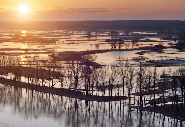 Trees standing in water during a spring high water at sunset
