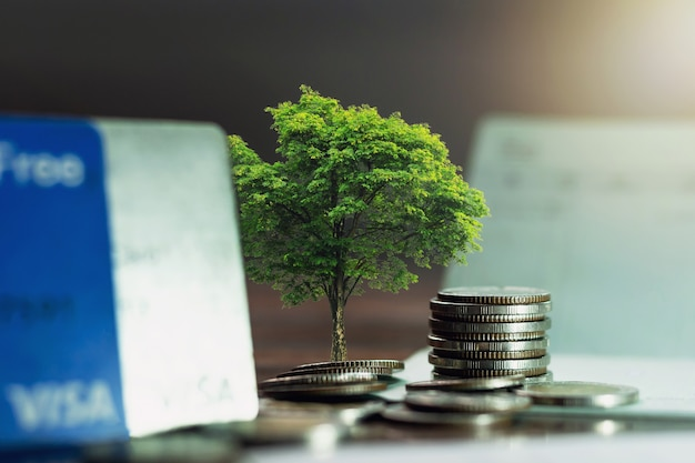 Trees that grow on piles of coins, business growth ideas.