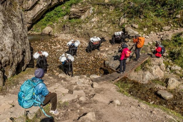 Trekker walk on way to mt.everest base camp in khumbu area,nepal