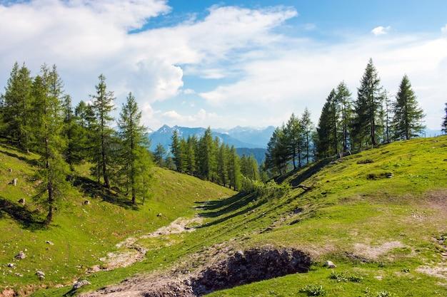 オーストリア、ダッハシュタイン国立公園のトレッキングルート。離れた高山と緑の森。夏の日の青い空