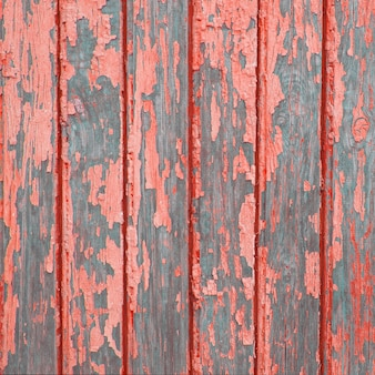 Trend of the colors for this season - coral.texture of vintage turquoise painted wooden background with layers of paint