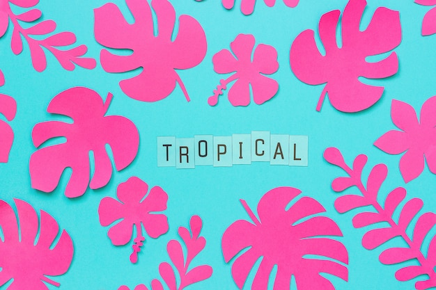 Trendy pink tropical leaves of paper and text inscription tropical on blue background