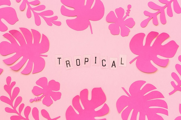 Trendy pink tropical leaves of paper and text inscription tropical on pink background.