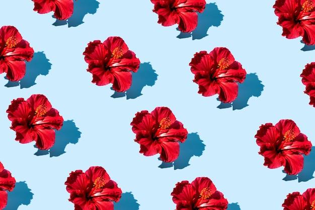 파란색 배경에 상위 뷰 히비스커스 꽃 패턴의 유행 팝 아트 디자인. 고품질 사진