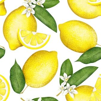 白のトレンディなシームレスなレモンパターン。テキスタイルおよびファブリック用