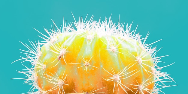 Trendy tropical neon cactus plant on blue