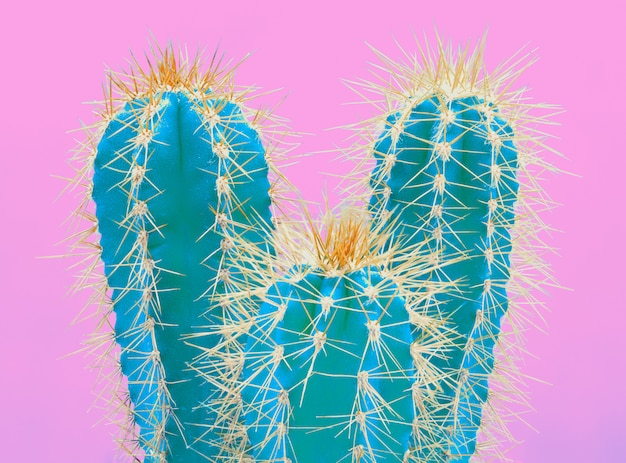 Trendy tropical neon cactus plant on pink