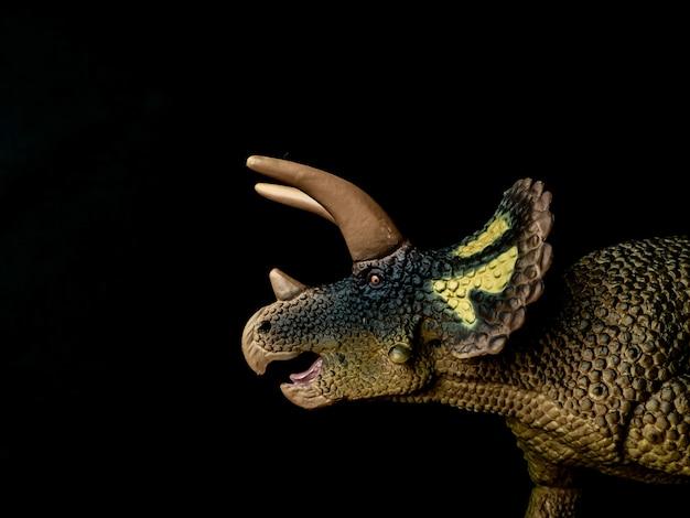 Triceratops dinosaur on black