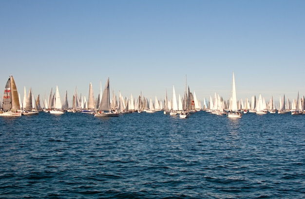Trieste, barcolana 2009 - the trieste regatta