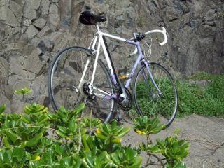 自転車を軽量triliteラリー