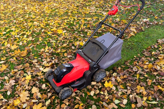 Trimming lawn and mulching leaves in autumn