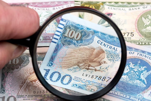 Trinidad and tobago dollars in a magnifying glass