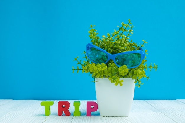 Trip letters text and little decoration tree