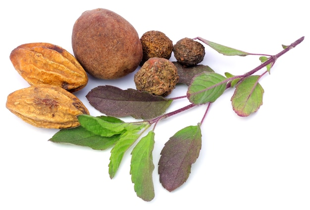 Triphala, a combination of ayurvedic fruits and holy basil leaves on white background