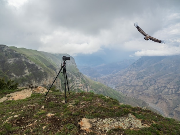 崖の上のカメラ付き三脚。崖の上に三脚を備えた反射カメラで、長時間露光を実行します。