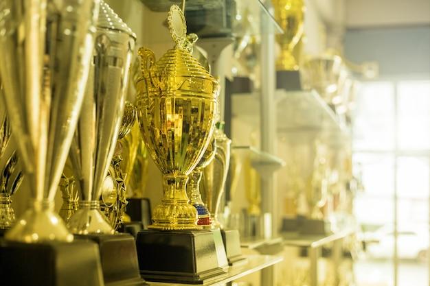 Трофейные награды для чемпионов дома.