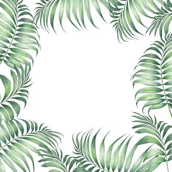 Tropic palm leaves.
