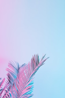 鮮やかな大胆なグラデーションホログラフィックカラーの熱帯とヤシの葉。コンセプトアート。最小限のシュルレアリスム。