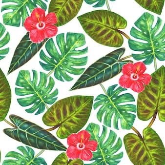 熱帯の背景白い背景の上のモンステラとフィロデンドロンとハイビスカスの花の熱帯のエキゾチックな緑の葉水彩手描きイラスト